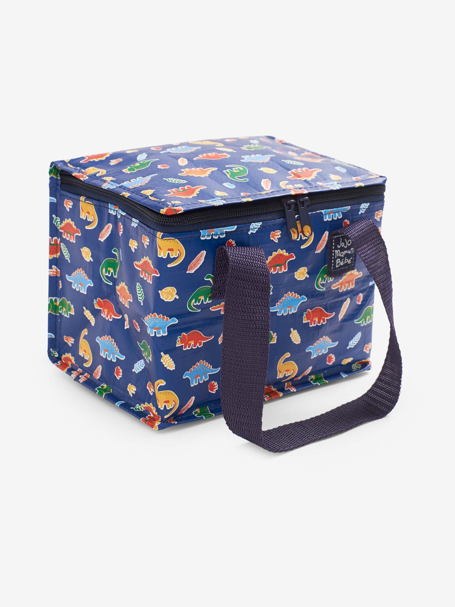 Blue Dino Insulated Food and Bottle Bag